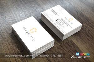 In card visit lấy ngay tại Thái Hà